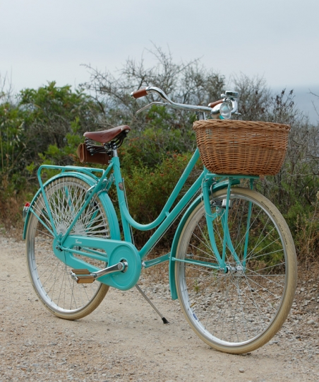 Travel Bicycle for Woman